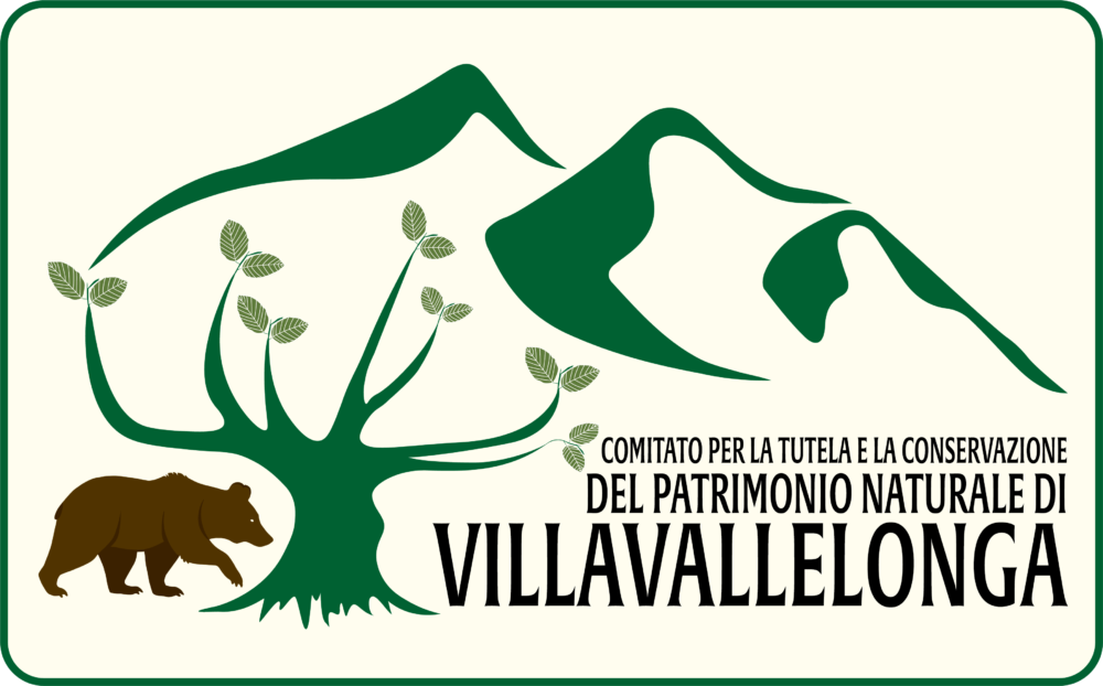 Villavallelonga.org